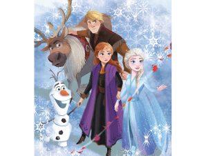 Κουβέρτα Fleece Κούνιας Dimcol Frozen 21