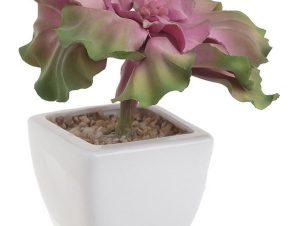 Διακοσμητικό Φυτό Σε Γλάστρα 3-85-084-0042 Green-Pink 7Χ7Χ16 Inart Πλαστικό