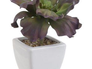 Διακοσμητικό Φυτό Σε Γλάστρα 3-85-084-0043 Green-Purple 7Χ7Χ16 Inart Πλαστικό